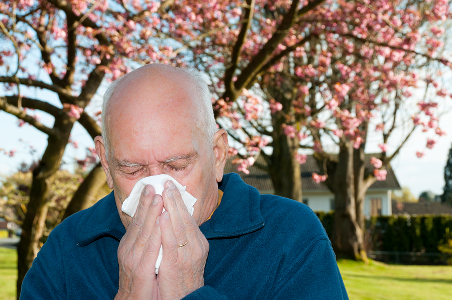 Home Care in Smithtown NY: Managing Spring Allergies
