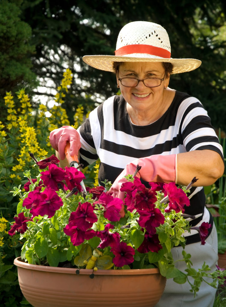 Elder Care in Bellmore NY: Health Benefits of Gardening