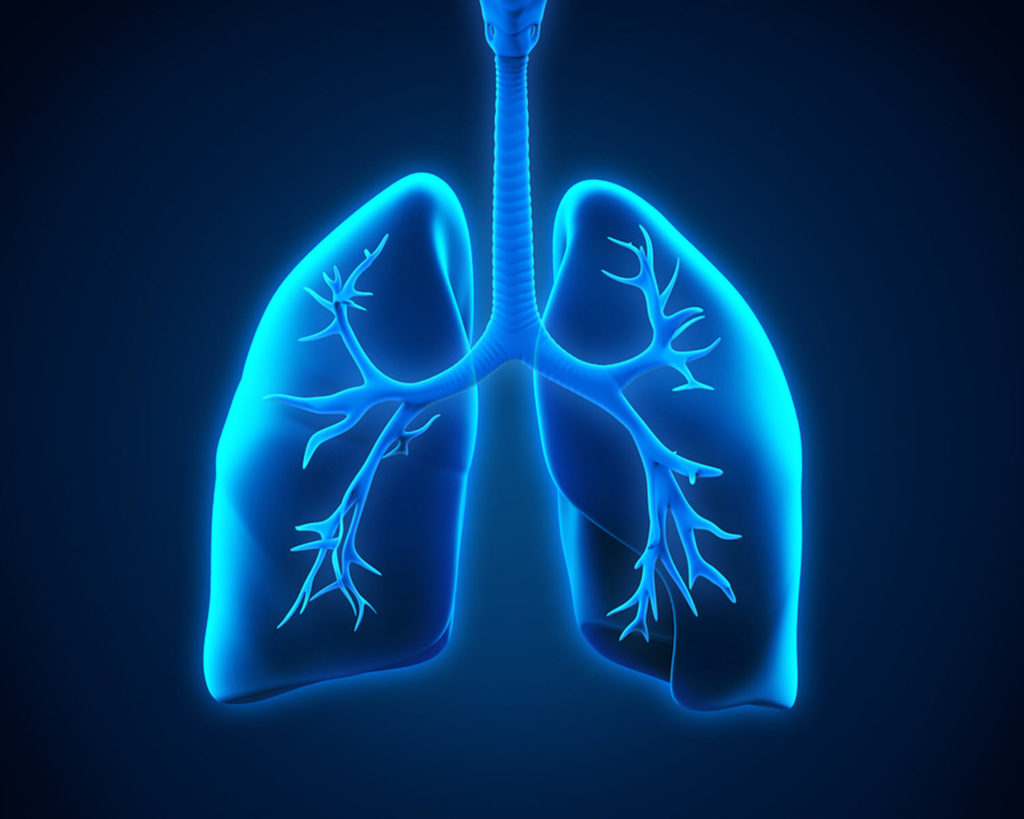 Caregiver in Huntington NY: What is Tuberculosis?